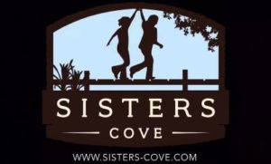 sisters-cove-lake-norman-homes-mooresville-nc-new-construction