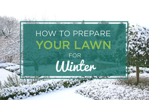 How-to-prepare-your-lake-norman-lawn-for-winter