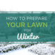 How-to -prepare-your-lake-norman-lawn-for-winter